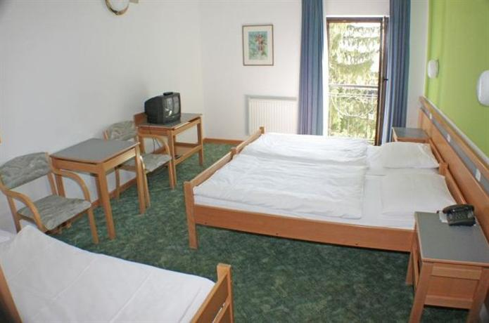 Alp Hotel Bovec