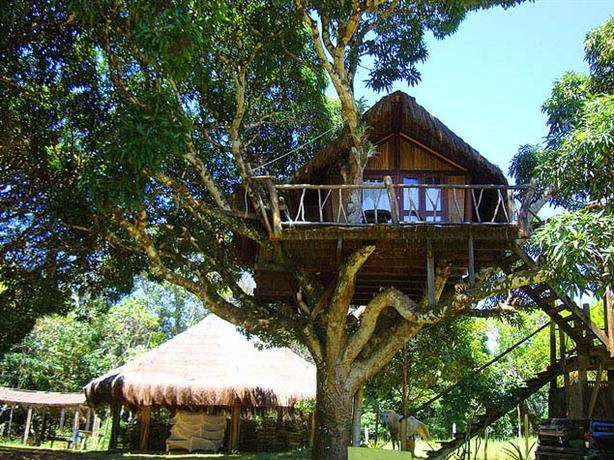 Art Jungle Eco Lodge