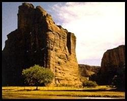 canyon de chelly national monument canyon in arizona. Black Bedroom Furniture Sets. Home Design Ideas