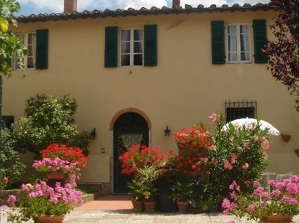 Image of Il Vicario