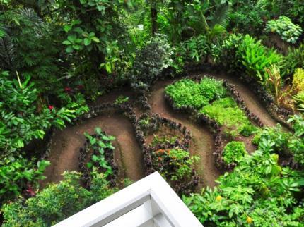 Bali Eco Adventure Resort alan Sentanu No. 9. Bayad, Tegallalang