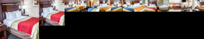 Comfort Inn & Suites Ozone Park