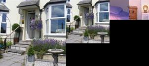 Rose Cottage Bed and Breakfast Launceston (England)