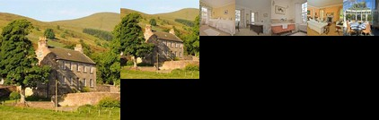 Ladywell House Bed & Breakfast