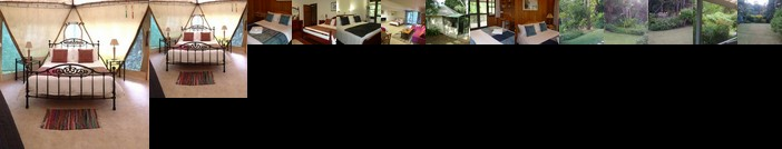 Mt Warning Bed and Breakfast Retreat