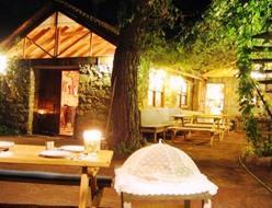 Daphne House Hotel Olympos Kumluca