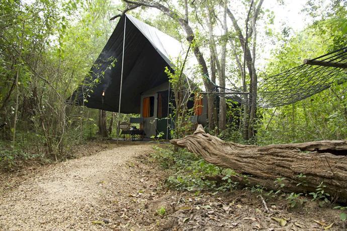 Mahoora Tented Safari Camp - Yala