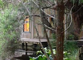 The Homestead at Orongo Bay_9